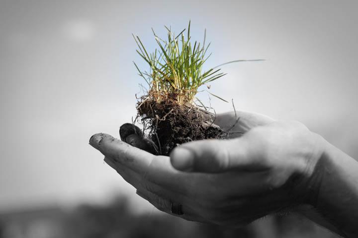 [생각나눔오픈토크] 자연농과 생태적인 삶-1차